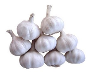 Wonderful Garlic!