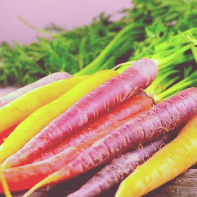 Different colored carrots means varied nutrients and different health benefits!